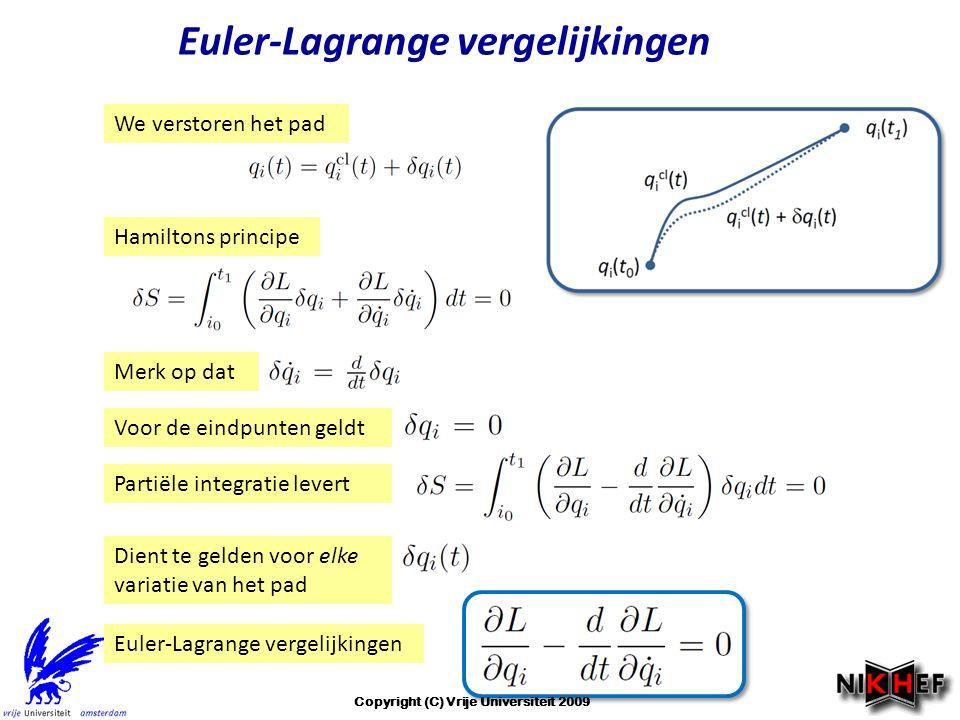Euler-Lagrange vergelijkingen Copyright (C) Vrije Universiteit 2009