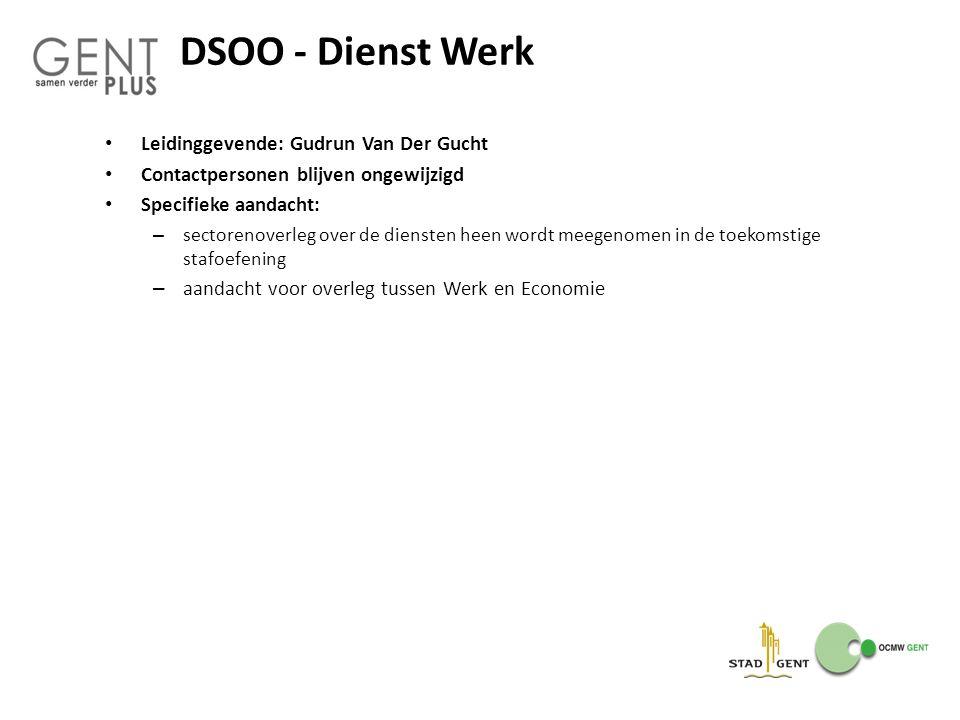 DSOO - Dienst Werk Leidinggevende: Gudrun Van Der Gucht