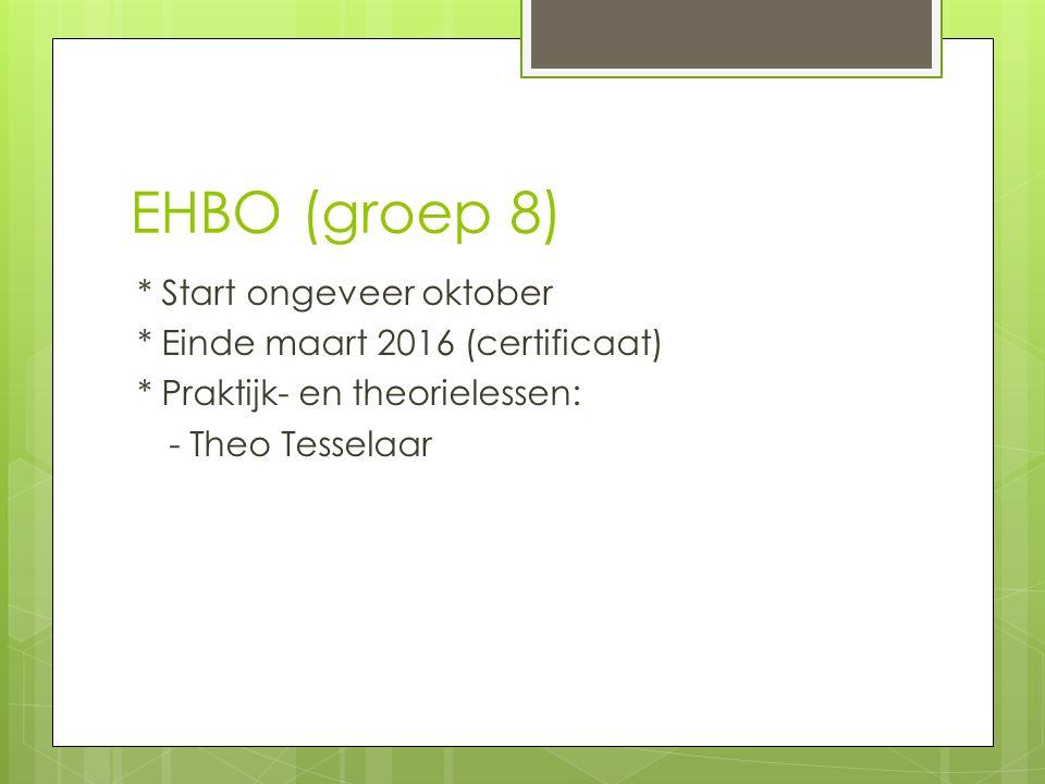 EHBO (groep 8) * Start ongeveer oktober * Einde maart 2016 (certificaat) * Praktijk- en theorielessen: - Theo Tesselaar