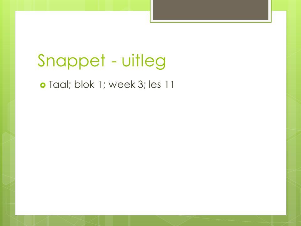 Snappet - uitleg Taal; blok 1; week 3; les 11
