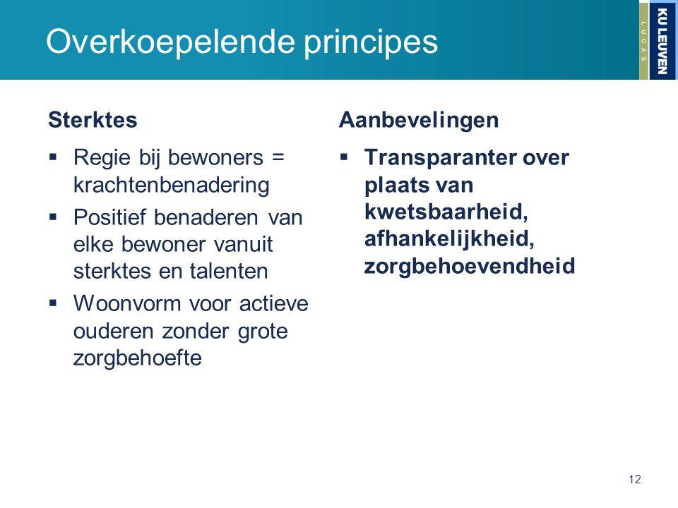 Overkoepelende principes