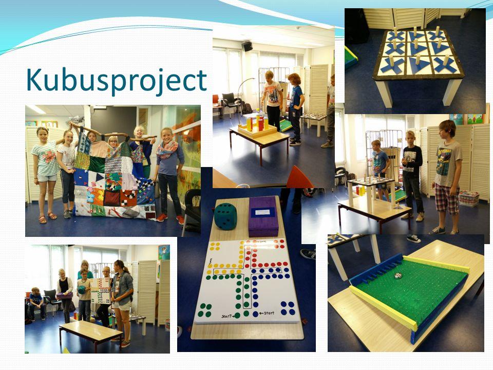 Kubusproject