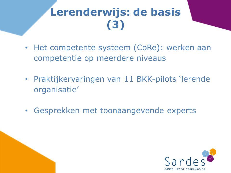 Lerenderwijs: de basis (3)