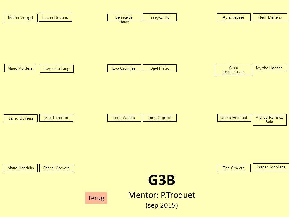 G3B Mentor: P.Troquet (sep 2015) Terug Martin Voogd Lucan Bovens