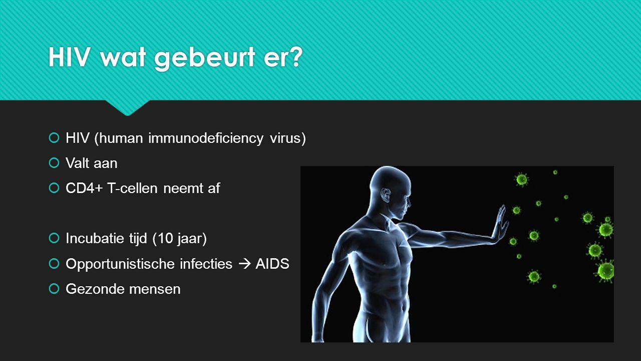 HIV wat gebeurt er HIV (human immunodeficiency virus) Valt aan
