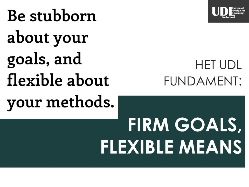 FIRM GOALS, FLEXIBLE MEANS