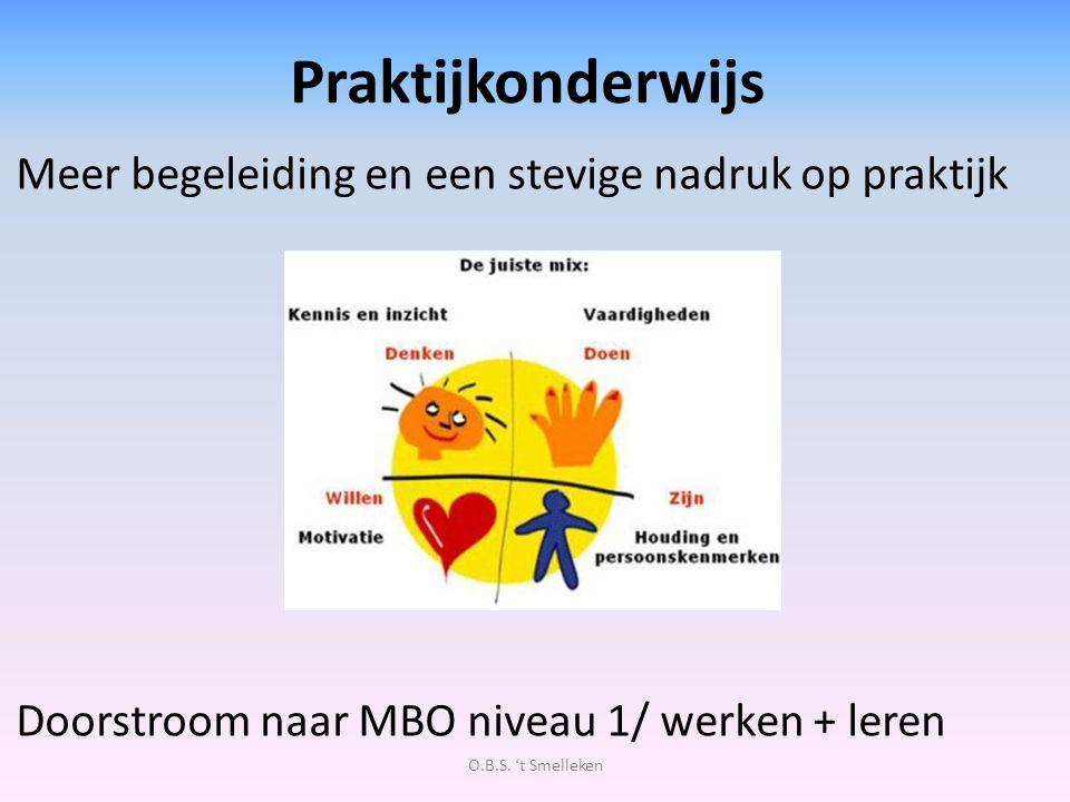 Praktijkonderwijs Meer begeleiding en een stevige nadruk op praktijk Doorstroom naar MBO niveau 1/ werken + leren