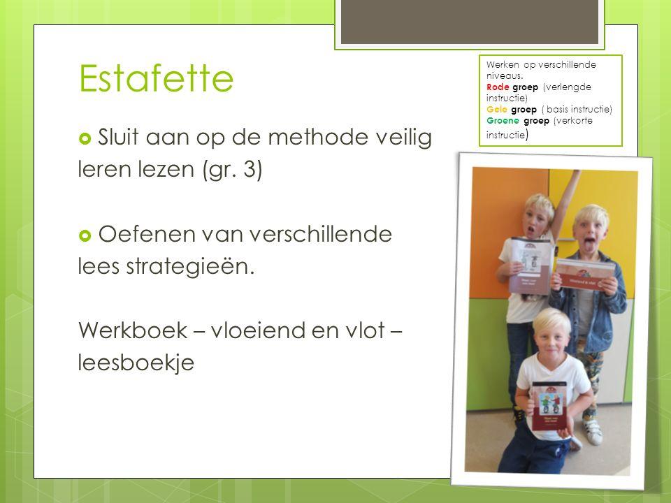 Estafette Sluit aan op de methode veilig leren lezen (gr. 3)