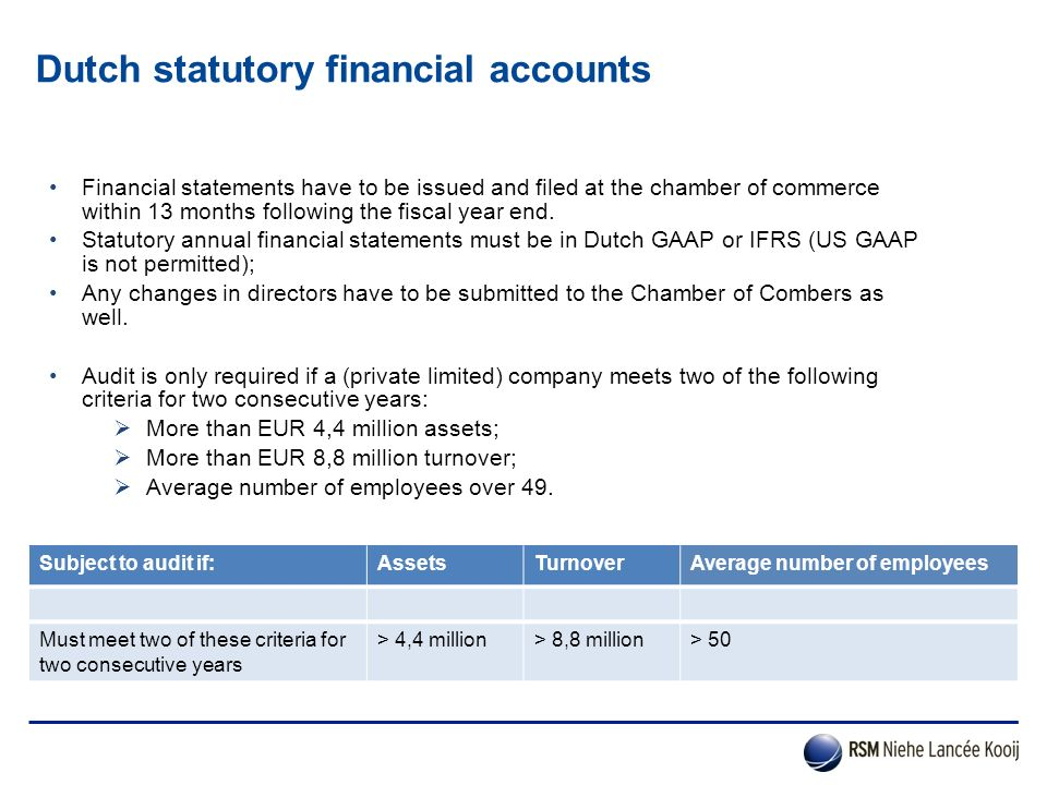 Dutch statutory financial accounts
