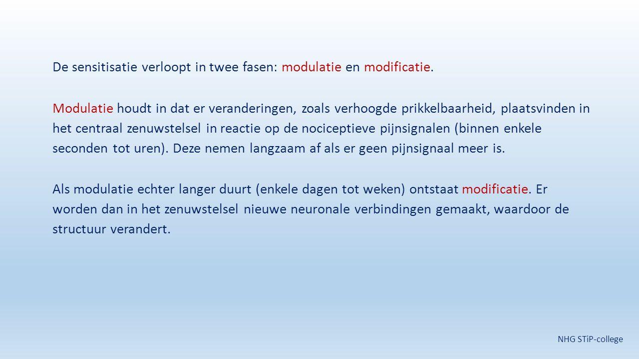 De sensitisatie verloopt in twee fasen: modulatie en modificatie
