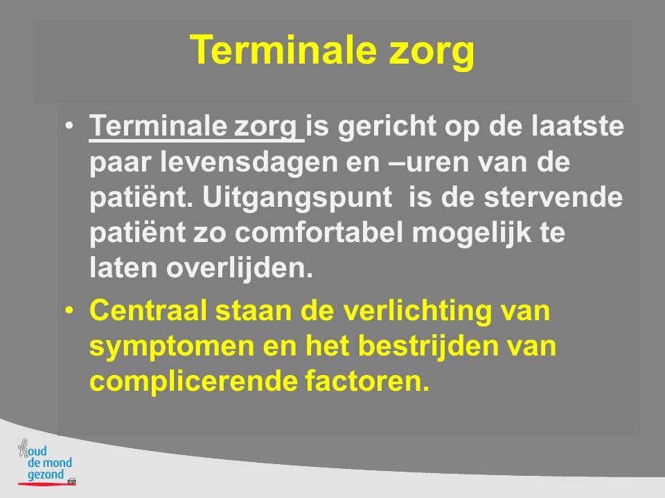 Terminale zorg