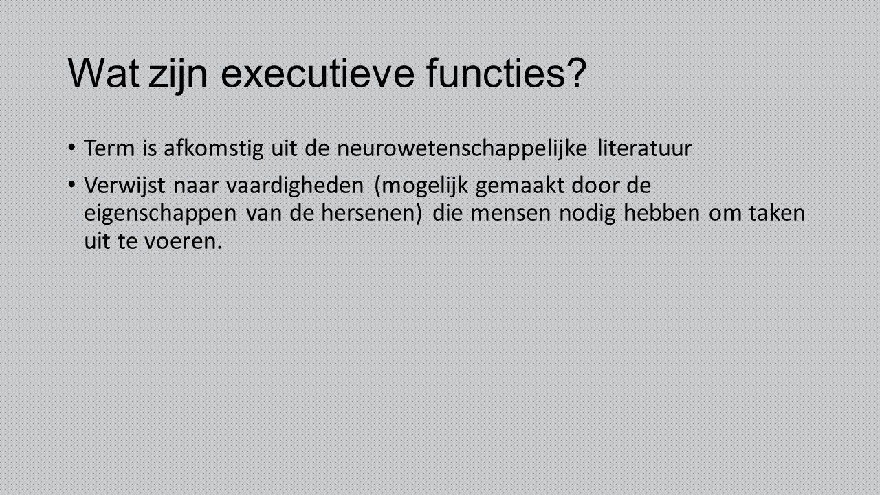 Wat zijn executieve functies