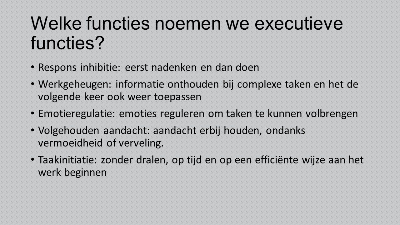 Welke functies noemen we executieve functies