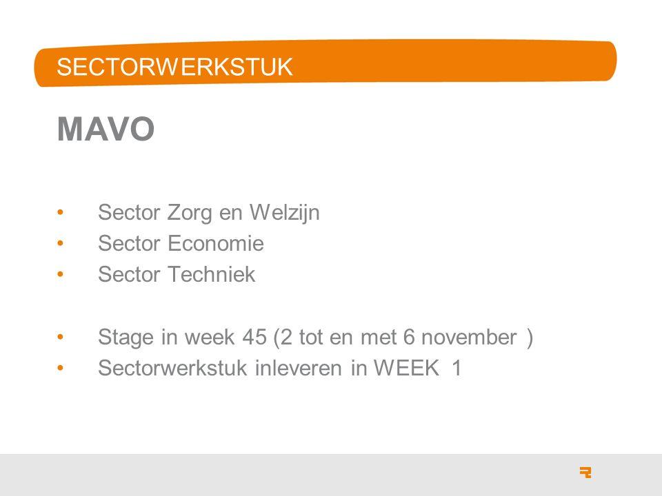 MAVO SECTORWERKSTUK Sector Zorg en Welzijn Sector Economie