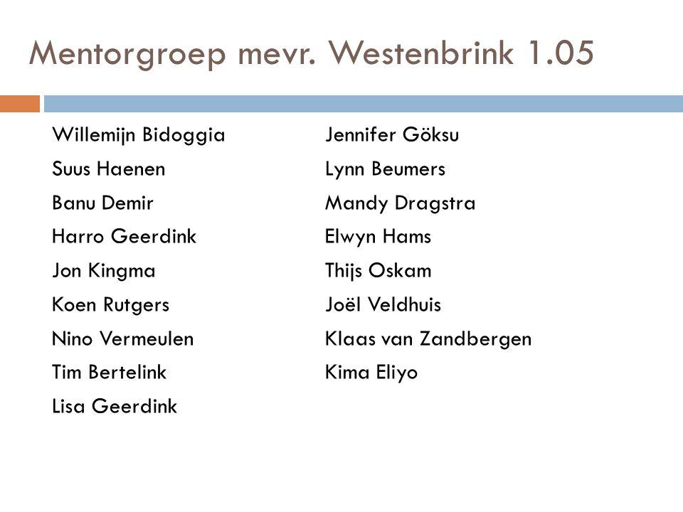 Mentorgroep mevr. Westenbrink 1.05