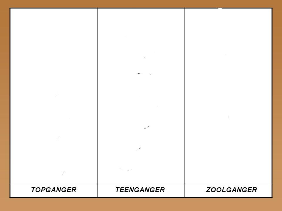 ELAND WOLF MENS TOPGANGER TEENGANGER ZOOLGANGER