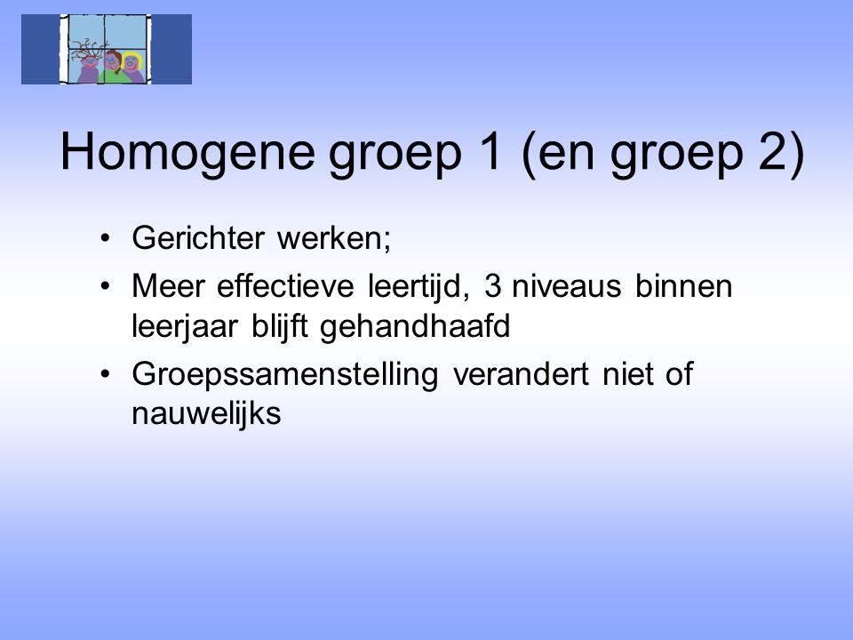 Homogene groep 1 (en groep 2)
