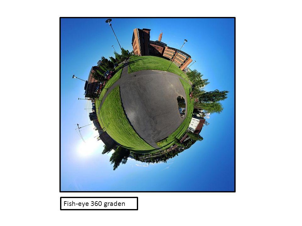 Fish-eye 360 graden