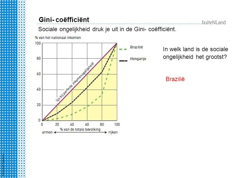 Gini- coëfficiënt Sociale ongelijkheid druk je uit in de Gini- coëfficiënt. In welk land is de sociale ongelijkheid het grootst