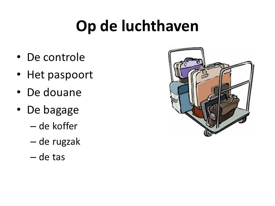 Op de luchthaven De controle Het paspoort De douane De bagage