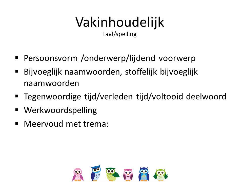 Vakinhoudelijk taal/spelling