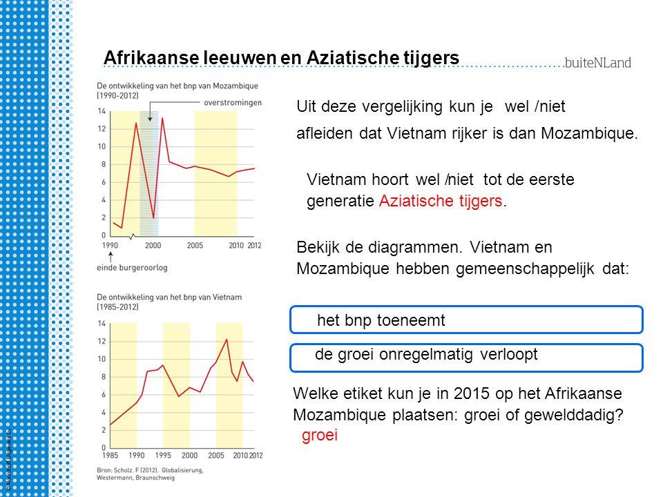 Afrikaanse leeuwen en Aziatische tijgers