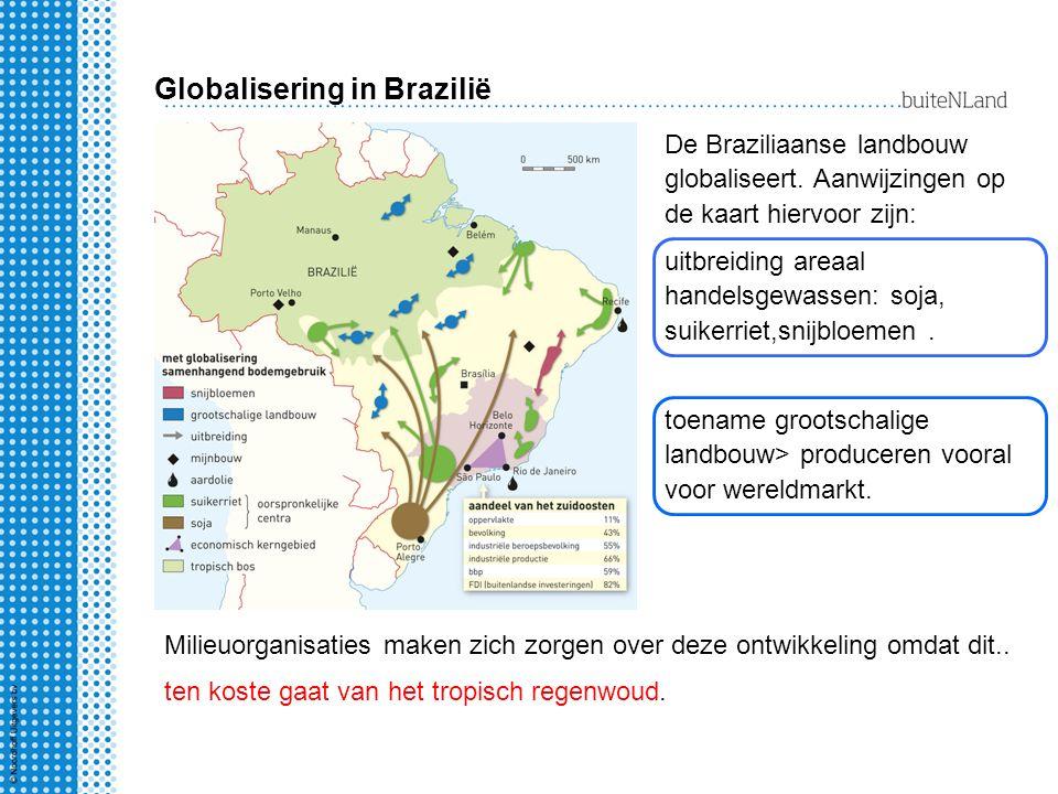 Globalisering in Brazilië