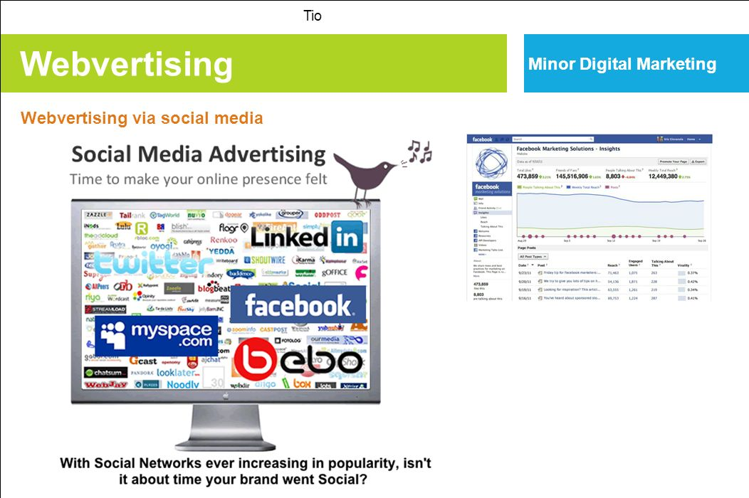 Webvertising Minor Digital Marketing Webvertising via social media Tio