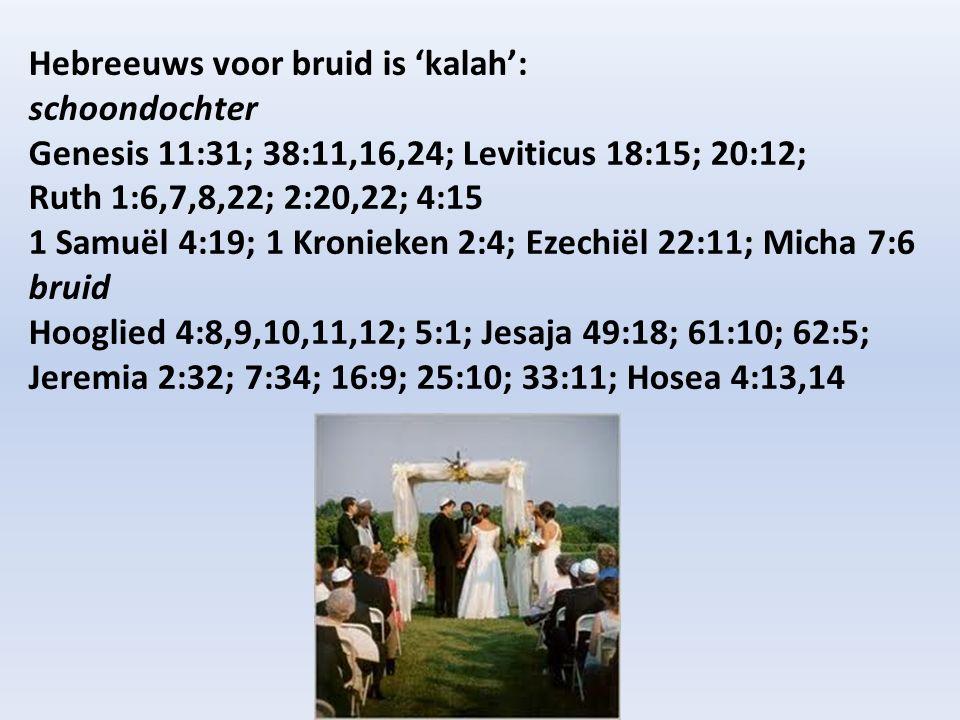 Hebreeuws voor bruid is 'kalah': schoondochter Genesis 11:31; 38:11,16,24; Leviticus 18:15; 20:12; Ruth 1:6,7,8,22; 2:20,22; 4:15 1 Samuël 4:19; 1 Kronieken 2:4; Ezechiël 22:11; Micha 7:6 bruid Hooglied 4:8,9,10,11,12; 5:1; Jesaja 49:18; 61:10; 62:5; Jeremia 2:32; 7:34; 16:9; 25:10; 33:11; Hosea 4:13,14