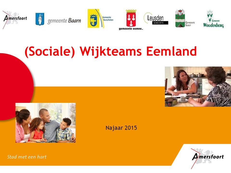 (Sociale) Wijkteams Eemland