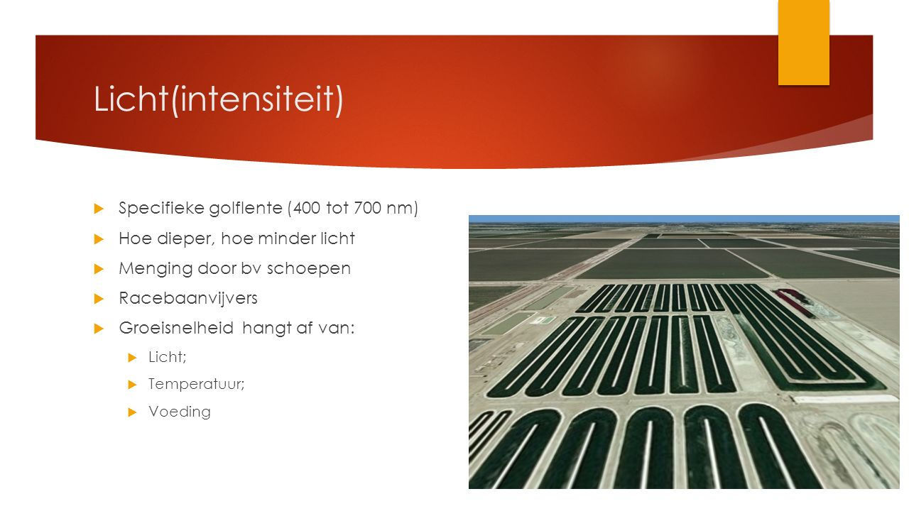 Licht(intensiteit) Specifieke golflente (400 tot 700 nm)