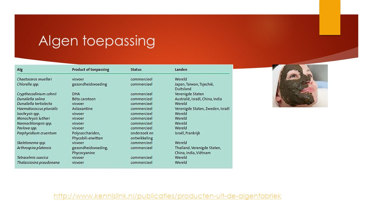 Algen toepassing http://www.kennislink.nl/publicaties/producten-uit-de-algenfabriek