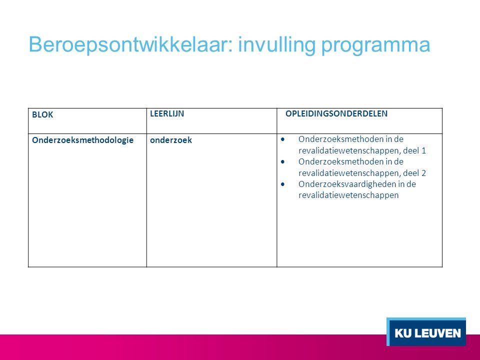 Beroepsontwikkelaar: invulling programma