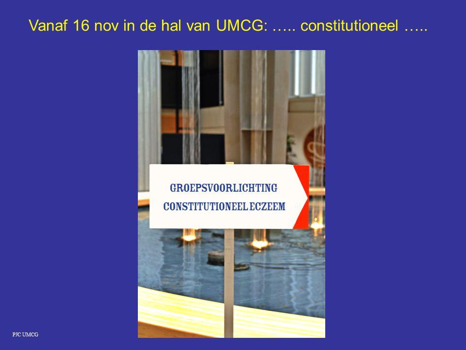Vanaf 16 nov in de hal van UMCG: ….. constitutioneel …..
