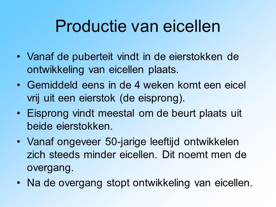 Productie van eicellen
