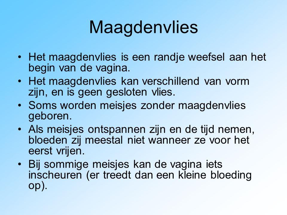 Maagdenvlies Het maagdenvlies is een randje weefsel aan het begin van de vagina.