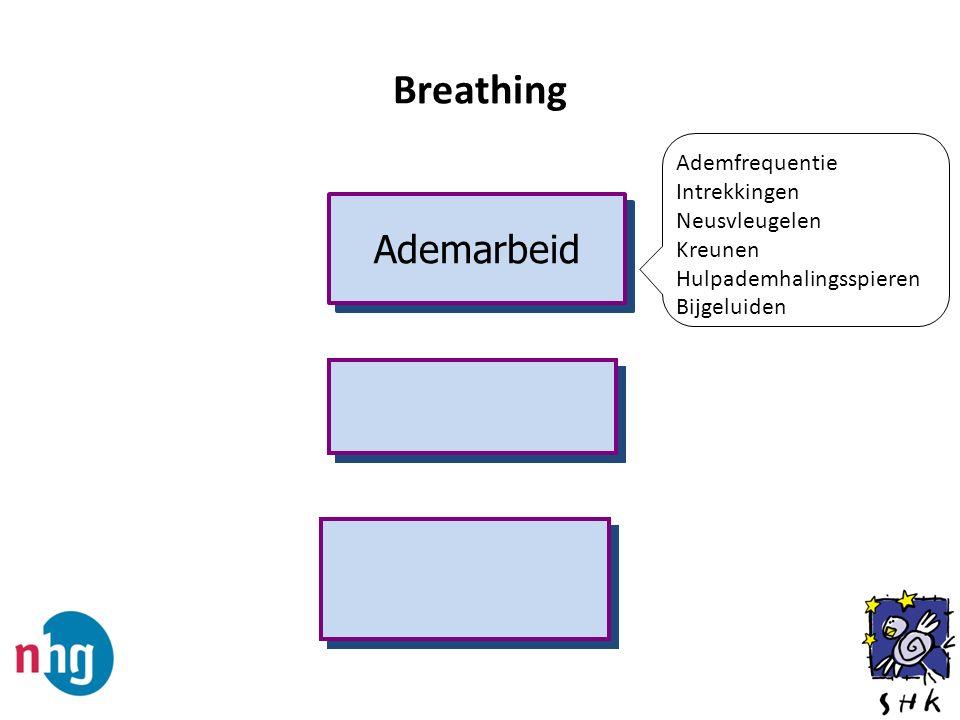 Breathing Ademarbeid Ademfrequentie Intrekkingen Neusvleugelen Kreunen
