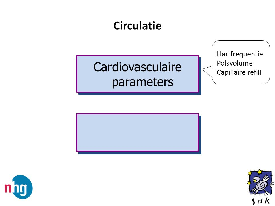 Cardiovasculaire parameters