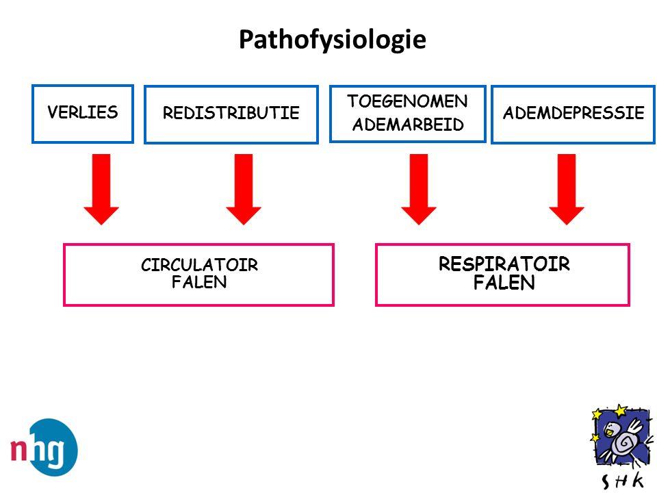 Pathofysiologie RESPIRATOIR FALEN VERLIES REDISTRIBUTIE TOEGENOMEN