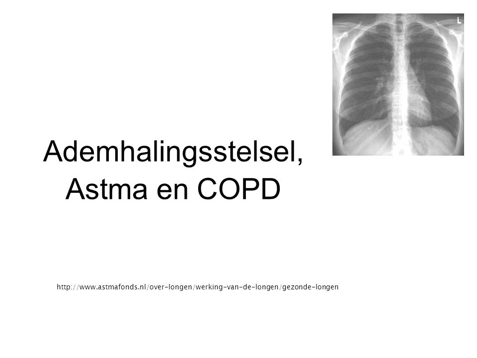 Ademhalingsstelsel, Astma en COPD