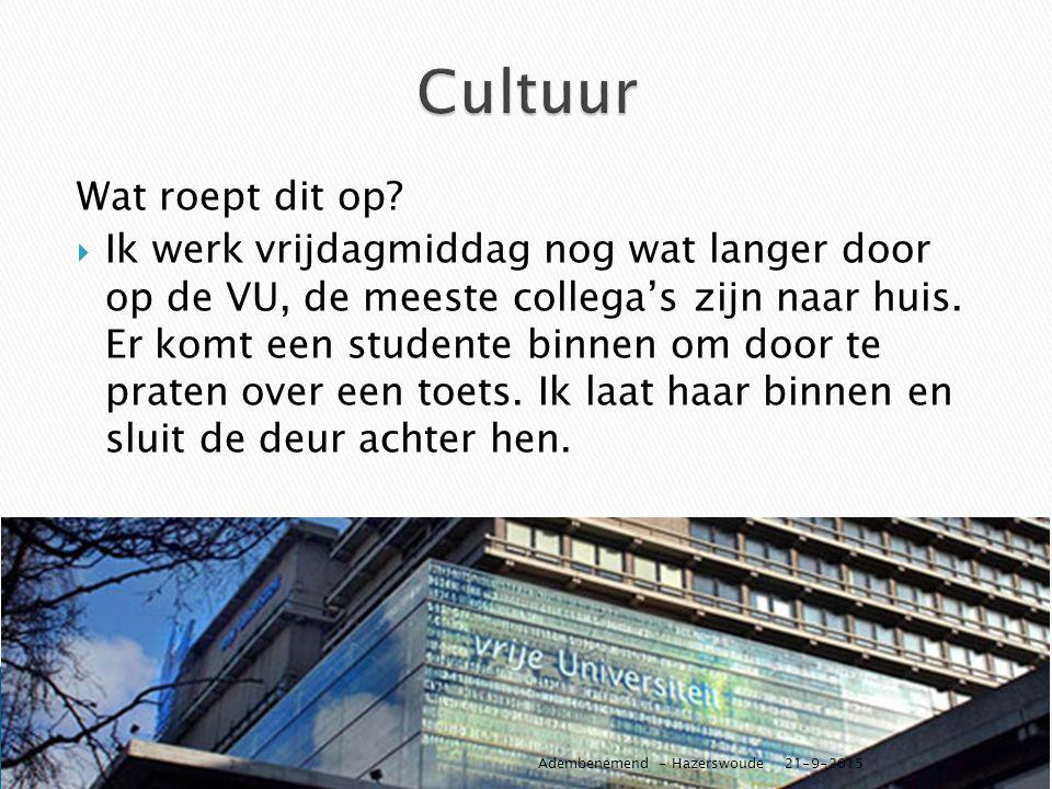 Cultuur Wat roept dit op