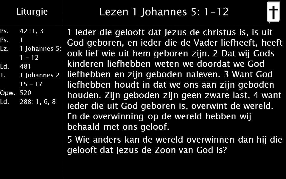 Lezen 1 Johannes 5: 1-12