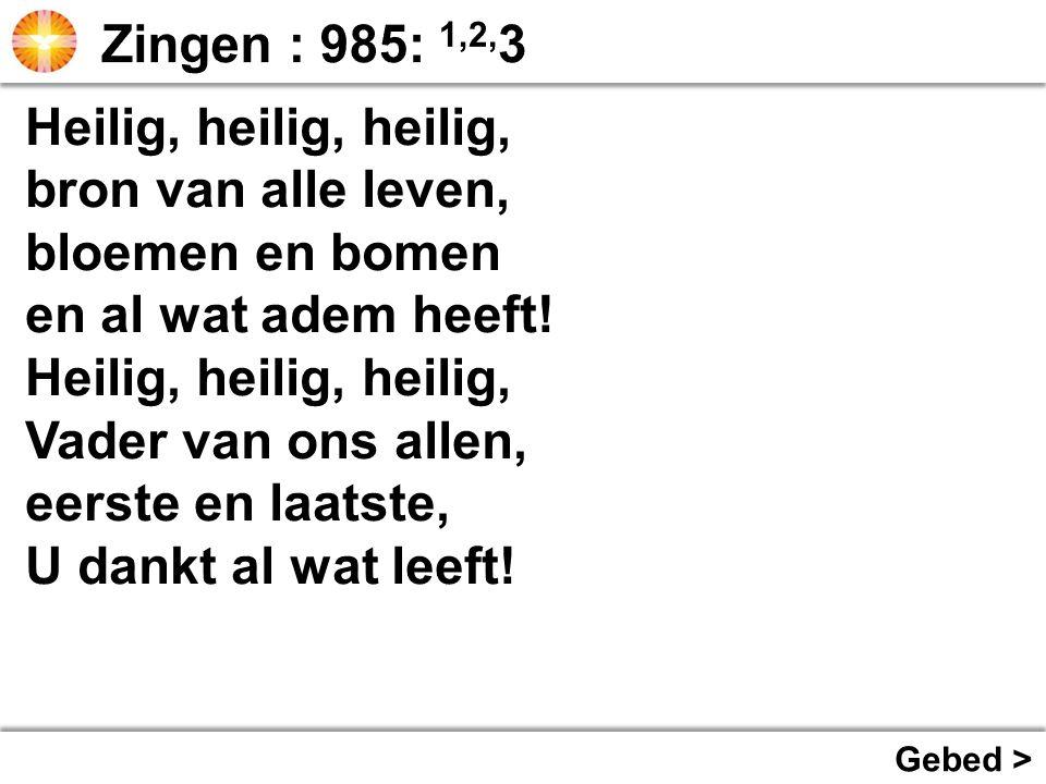 Zingen : 985: 1,2,3 Heilig, heilig, heilig, bron van alle leven,
