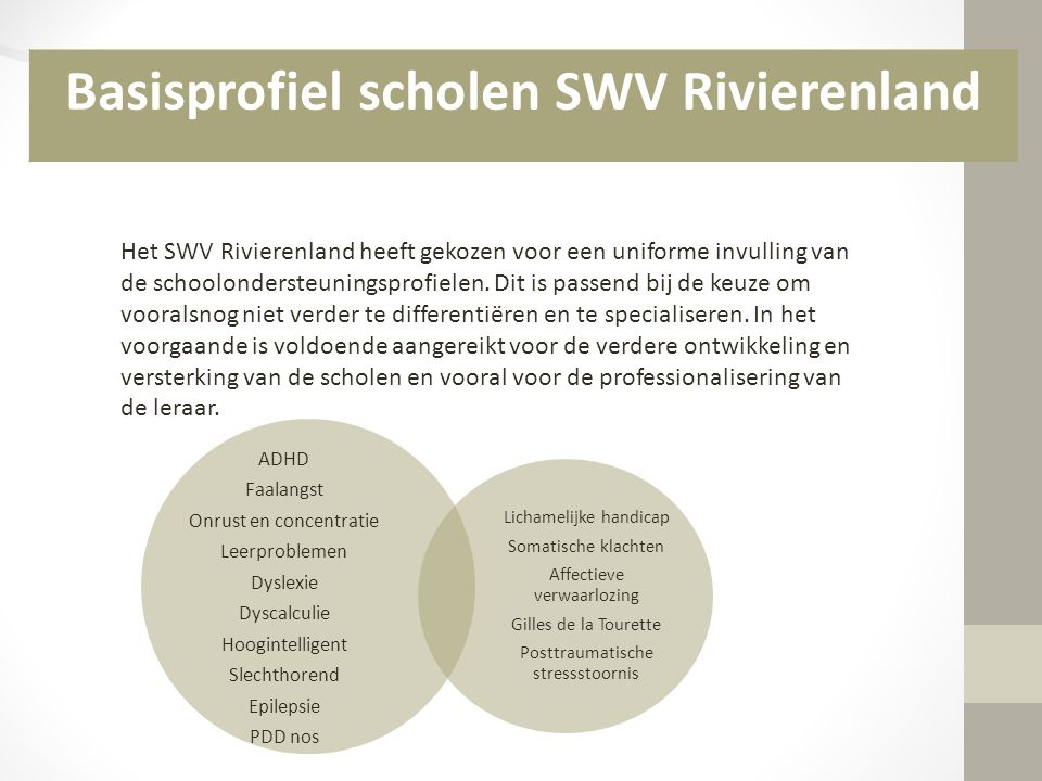 Basisprofiel scholen SWV Rivierenland