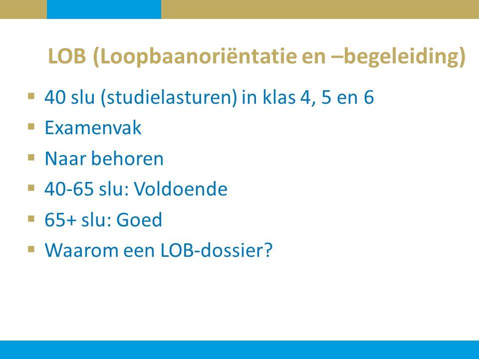 LOB (Loopbaanoriëntatie en –begeleiding)