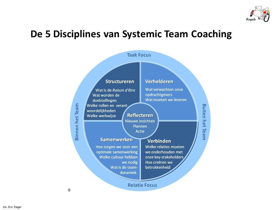 De 5 Disciplines van Systemic Team Coaching