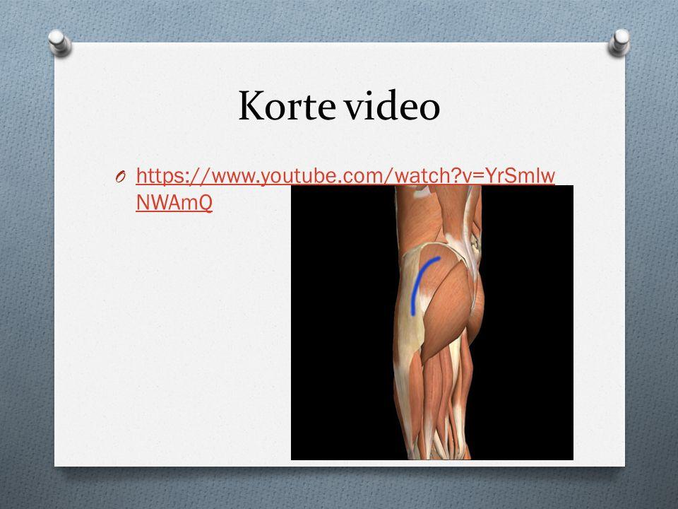 Korte video https://www.youtube.com/watch v=YrSmlwNWAmQ