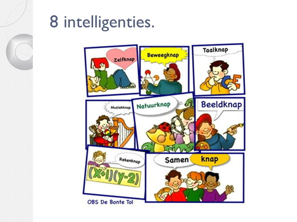 8 intelligenties.