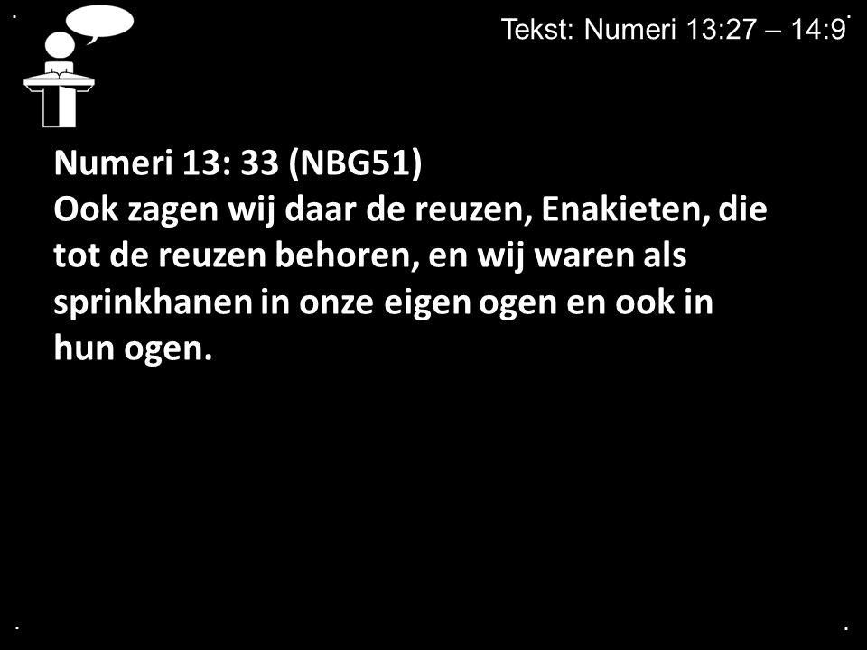 . . Tekst: Numeri 13:27 – 14:9. Numeri 13: 33 (NBG51)