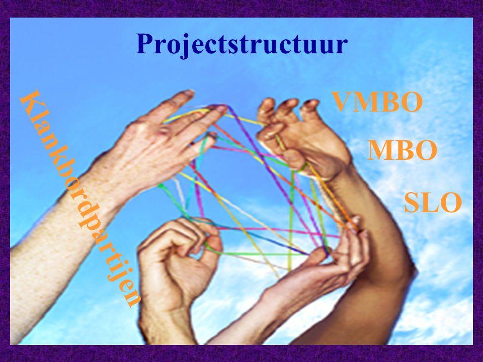 Projectstructuur VMBO MBO Klankbordpartijen SLO